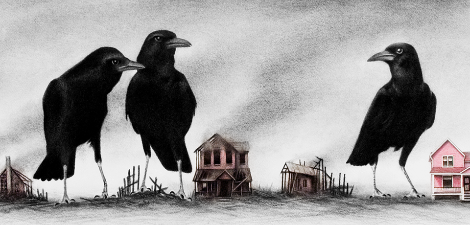 Crows Know (you can never go home)